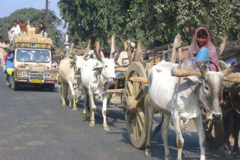 Chatra mela Chatra Jharkhand India