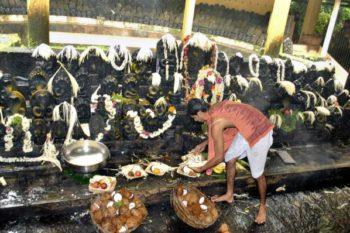 Nag Panchami, Karnataka India